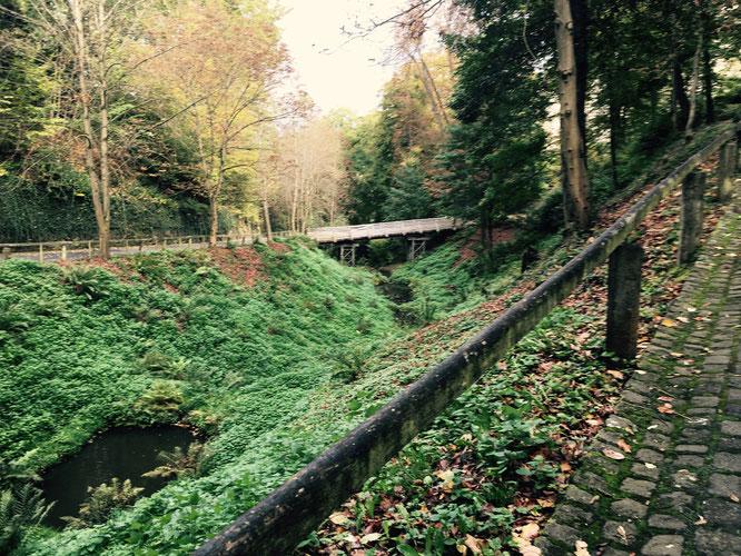 Der Weg zum Schloss Stolzenfels