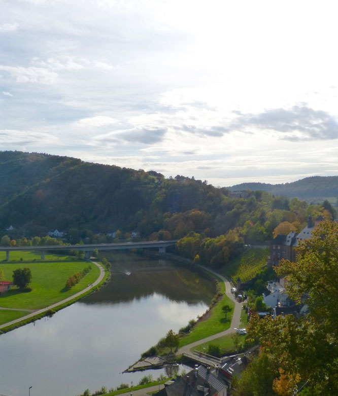 Ausblick von der Saarburg auf die Saar.