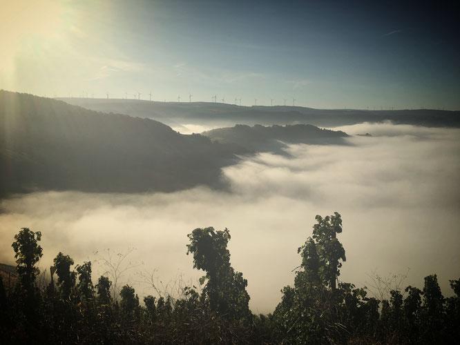 Von hier oben kann man dem Nebel beim Wandern und Wabern zuschauen.