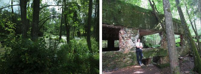Wolfsschanze (Wolf´s Lair), Rastenburg (Kętrzyn), Gmina Kętrzyn, Pojezierze Mazurskie, Woiwodschaft Ermland-Masuren (54° 4′ 46″ N, 21° 29′ 37″ E).