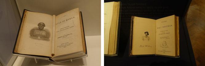 Homer (frühester Dichter des Okzident) und Whitman (noch vor E.A. Poe und H.P. Lovecraft die Nr. 1 des etwas eingeschränkten Literaturbetriebes der Neuen Welt jenseits des Atlantiks).