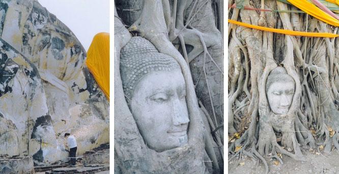 Immer wieder Ayutthaya/Thailand (14° 21′ 0″ N, 100° 35′ 0″ E)...