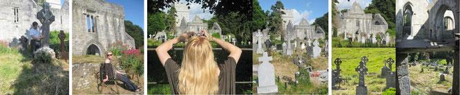 Muckross Abbey umgibt ein verwunschener Friedhof - übersät mit keltischen Kreuzen als Grabsteine...