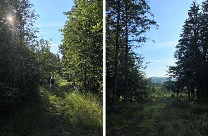...from Bilstein to Hoherodskopf - 50° 29′ 44.98″ N, 9° 12′ 10.61″ E