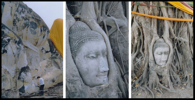 """Took these pics in historic Ayutthaya - the old capital of #Thailand - again. A great location, only 50 miles from Bangkok""... #Buddhism"