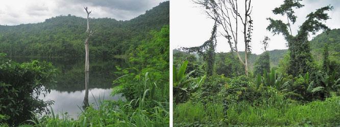 Spektakulär, beinahe bizarr: im Kaeng Krachan Nationalpark...