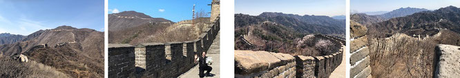 """""""Walking on the Chinese Wall: reflecting my travels to The Great Wall of China, for example Mutianyu (40° 26′ 16.86″ N, 116° 33′ 42.84″ E), 70 km north of Beijing."""""""