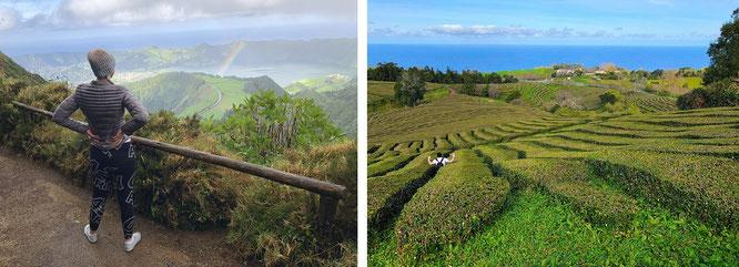 """""""Boca do Inferno (l.) und Chá Gorreana (r.), the only tea plantation in Europe (since 1883)."""" Lediglich das benachbarte Chá Porto Formoso und Truro in Cornwall/England haben jeweils eine weitere, kleinere Tee-Anpflanzung aufzubieten..."""