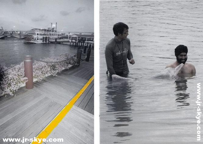 """Auch das ist Singapur: Stewords Riverboat am Marina South Pier und """"Schwimmen mit Delphinen"""" im Delfinarium auf Sentosa…"""