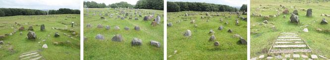 Von Flugsand bedeckt und 1.000 Jahre konserviert (ab 1050 n. Chr): das spektakuläre Gräberfeld von Lindholm Höje...