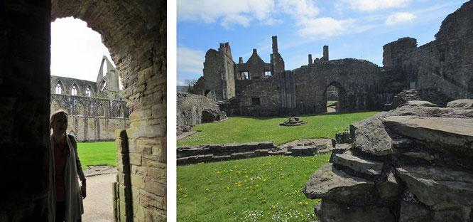 Ziel britischer Maler und Poeten des 18. und 19. Jahrhunderts und erstes, großes Ziel Eurer eigenen - möglicherweise unmittelbar - bevorstehenden Wales-Reise: Tintern Abbey...