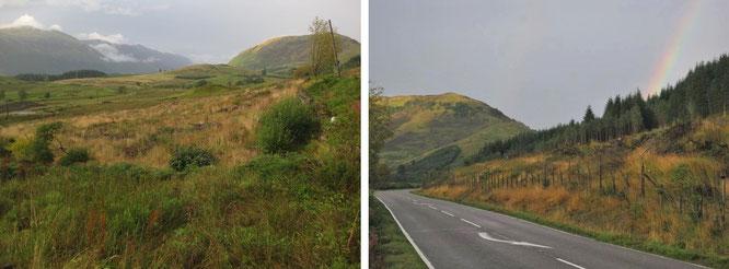 Typische Landschaft, die Ihr während Eures Trips durch Argyll and Bute durch die Scheiben Eures Fahrzeugs zu sehen bekommt: zwischen Loch Lommond und Castle Stalker...
