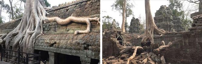Angkor ក្រុងអង្គរ