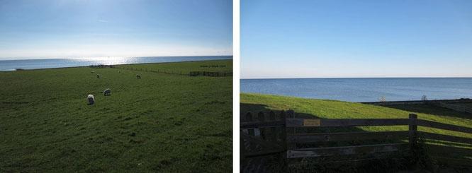 Die Nordseeküste zwischen Alkmaar und Den Heeg am frühen Morgen. Immer wieder eröffnen sich (grün-blaue) Ausblicke auf das Meer, unterbrochen von einigen - vor allem im Sommer gutbesuchten - Badestränden wie Zandvoort und Bloemendaal...