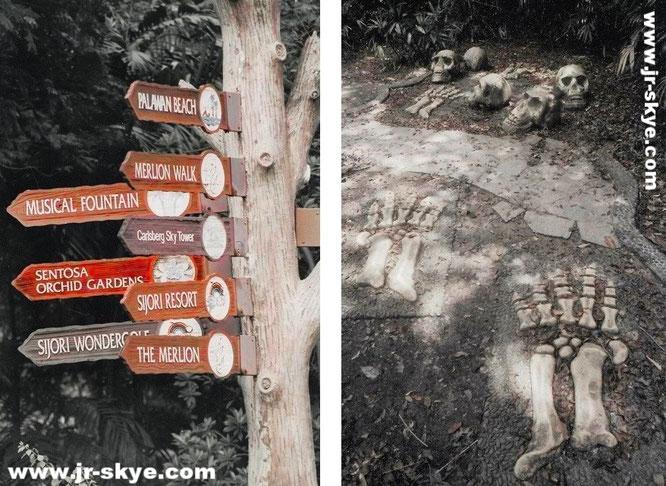 """Welchen Weg nehmen wir auf Sentosa - evtl. den links nicht ausgeschilderten """"Mount Imbiah Trail and Nature Walk""""? Immerhin hält dieser einige unerwartete Überraschungen bereit..."""