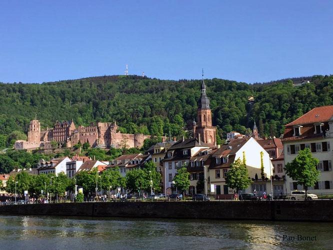 ein schöner Blick auf das Heidelberger Schloss kurz nach dem Ablegenn
