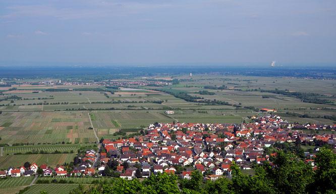 Blick von der Burg auf Dörfer und Weinreben - und einen Atommeiler in Betrieb