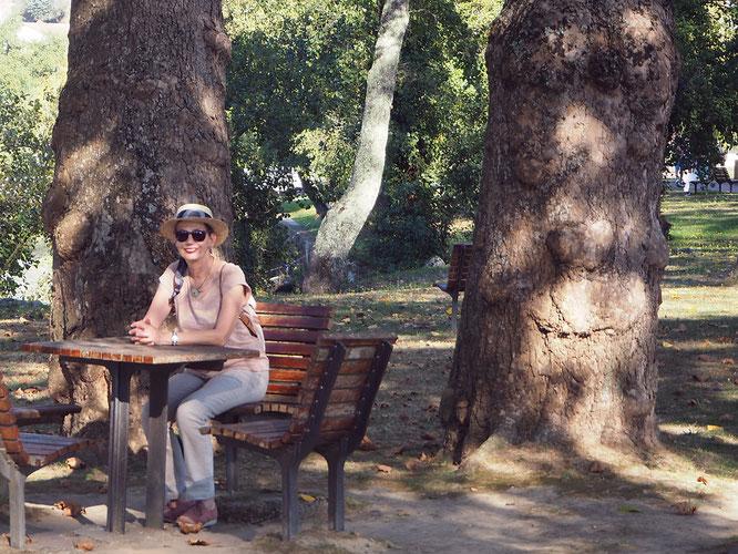im Park in der Nähe des Stellplatzes