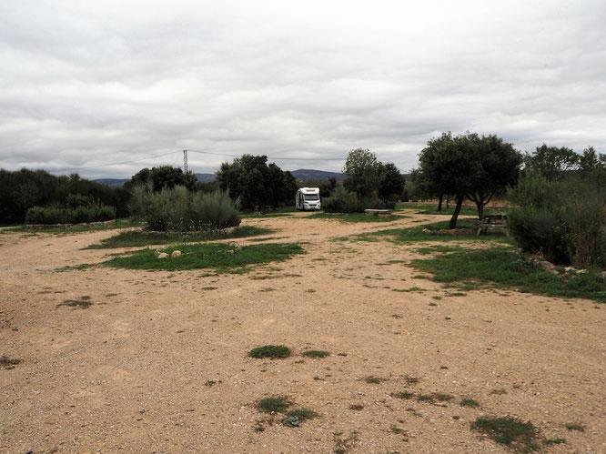 Maggie allein auf weiter Flur im Herbst 2018 nähe Morella in Spanien
