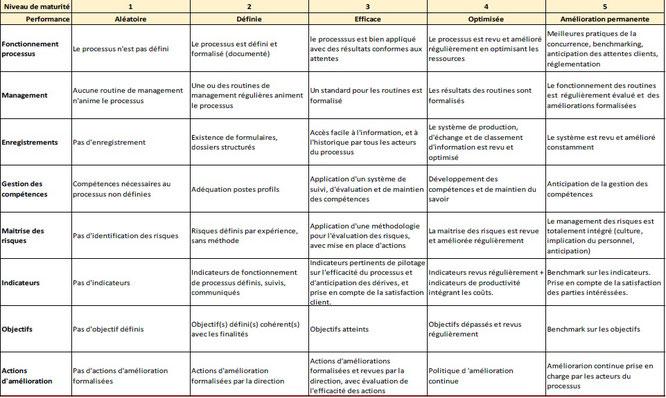 Exemple de grille de maturité des processus