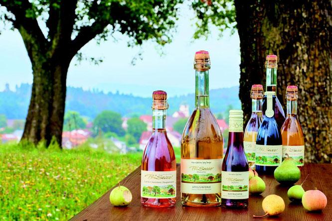 verschieden große PriSecco Flaschen unter Obstbaum mit Wiese und Obst