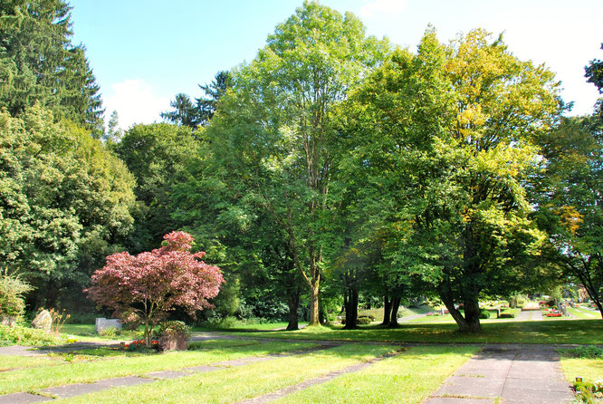 Bild: Westfriedhof Ravensburg Naturschutz