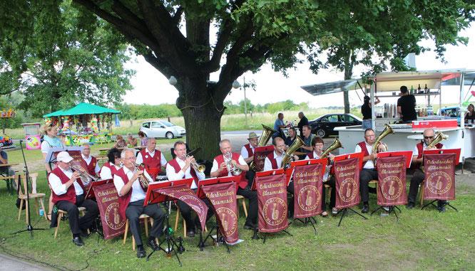 Die Oderbrucher Blasmusik spielt unter der Biegener Festplatzeiche