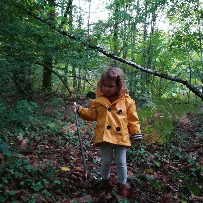A la recherche des champignons
