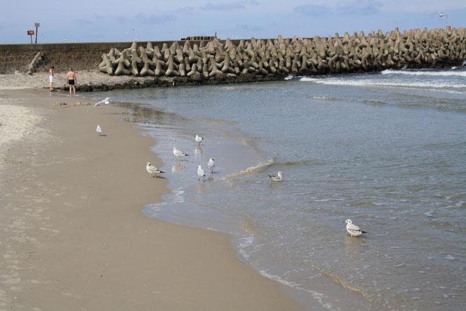 Strandidylle am Morgen