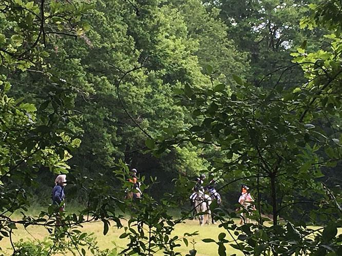 Les cavalières de la Ferme Equestre du Buisson sur la détente du CSO au Green Cross des Grilles
