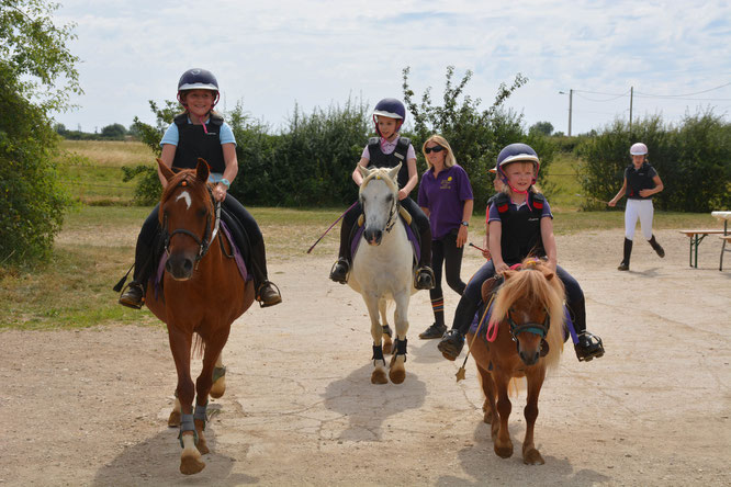 Stage d'équitation dans l'Yonne à proximité d'Auxerre