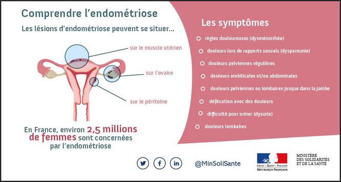 Fodmap Coueron Saint-Herblain Nantes Diététicienne