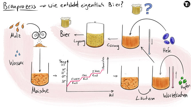 Tafelbild das den Brauprozess bei der Herstellung von Bier visualisiert.