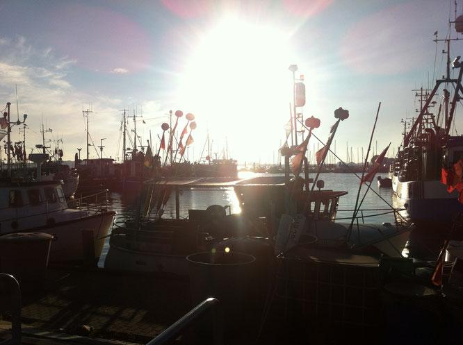Hafen, Burgstaaken, Fehmarn, Ostsee, Benitaljo