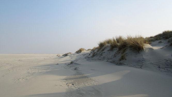 Dünen und Sand