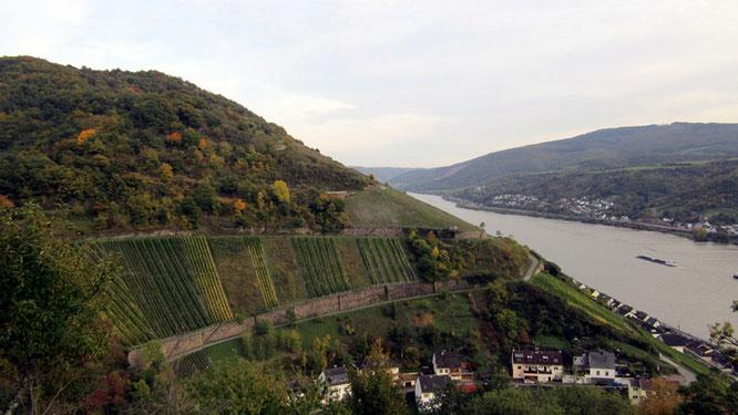Steile Weinhänge
