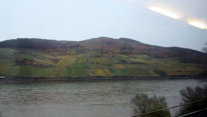 Blick aus dem Zug auf das Rheintal