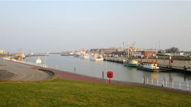Ein Morgen am Hafen
