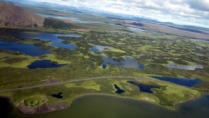 Gebiet des Mývatn-Sees