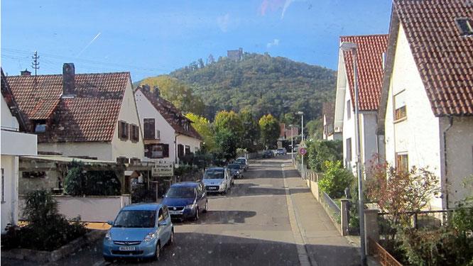 Blick auf das Hambacher Schloss