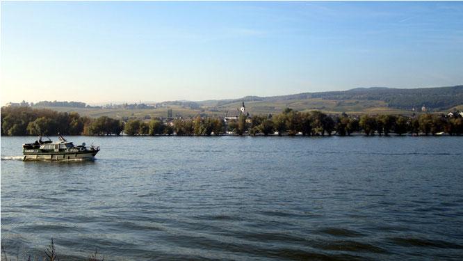 Blick von Ingelheim nach Östrich-Winkel