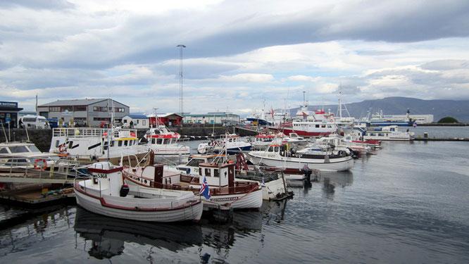 Hafen von Reykjavík