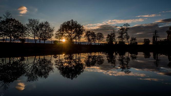 The sun and the silence