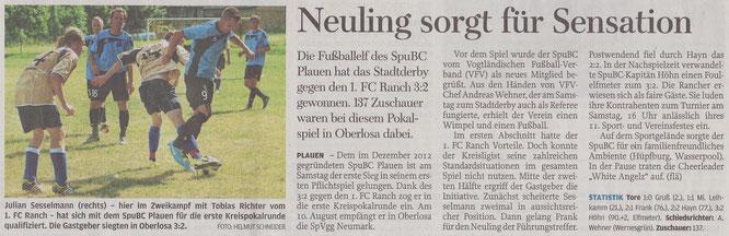 Freie Presse vom 29.07.2013