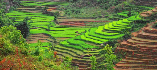 Circuit Nepal - Tansen - Rani Mahal - Palpa Trek - Chepang Hills