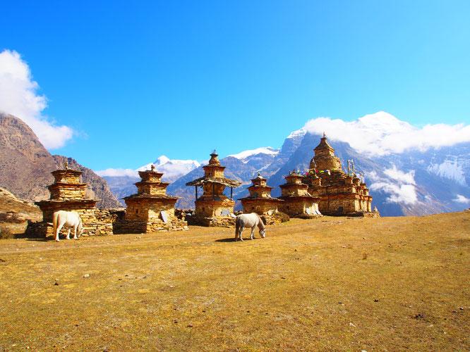 Trek Naar Phu - Annapurna - Tilicho - Kang La - Mesokantho La - Népal