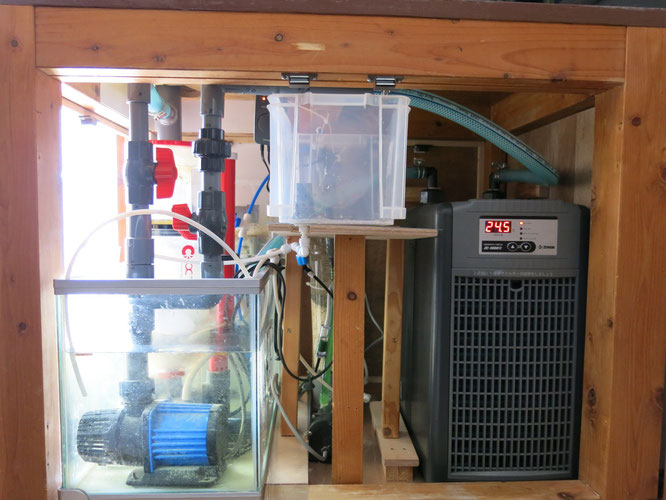 hsbao dcポンプ 直流ポンプ オーバーフロー水槽 DEP-6000 DCポンプ 配管