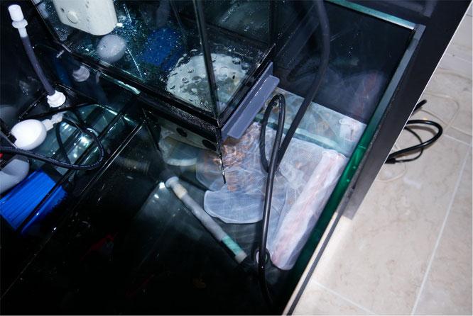 レッドシー リーファー 170 オーバーフロー水槽 HSBAO 水中ポンプ DCポンプ