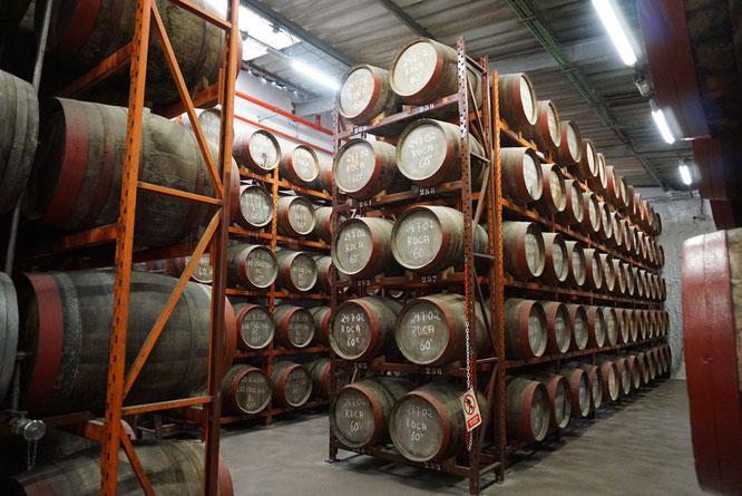 Die Fabrik weist mehr als 6000 Fässer auf, Rumfabrik Ron Arehucas
