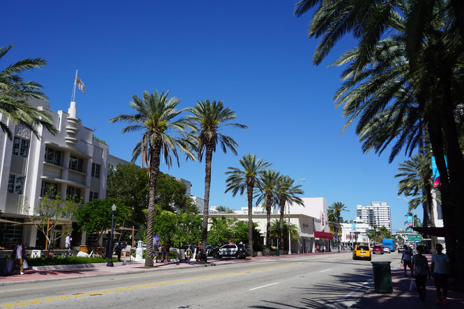 Die Collins Avenue in Miami Beach